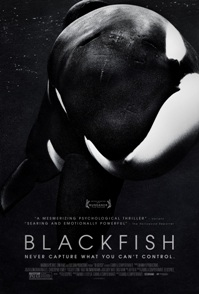 Poster del documental Blackfish
